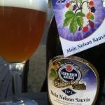 Beer Review: Weisses Bräuhaus G. Schneider & Sohn, TAP X Mein Nelson Sauvin